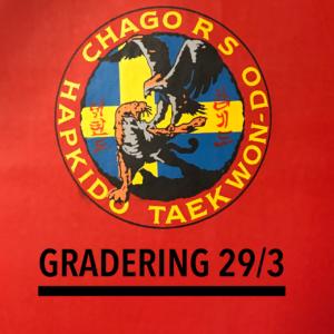 Gradering 29/3